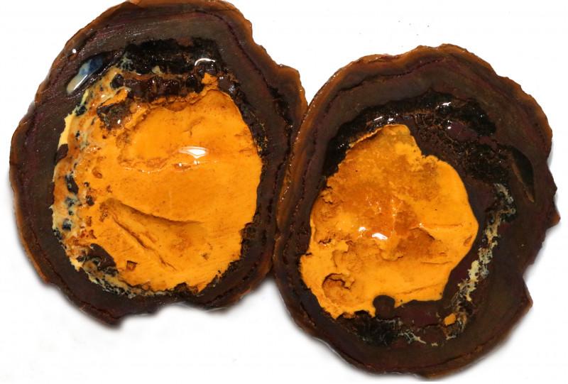169.90 CTS YOWAH PHANTOM NUTS SPECIMEN-AUSTRALIA [MGW8087]