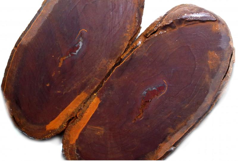 1735.60 CTS YOWAH PHANTOM NUTS SPECIMEN-AUSTRALIA [MGW8095]
