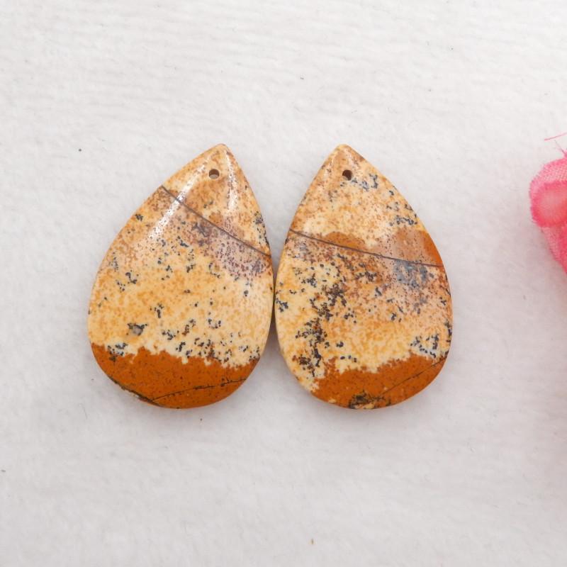 Picture Jasper earrings ,gemstone earrings ,healing stone H519