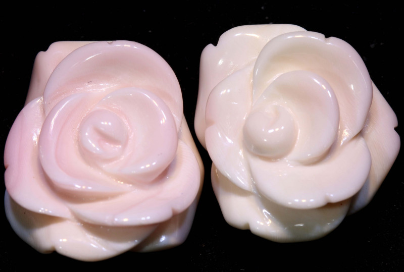 45 CTS CONCH SHELL ROSE CARVING HALF DRILLED LT-350