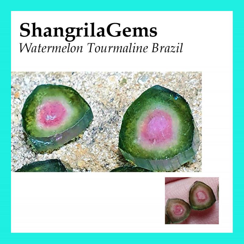 Pair Watermelon Tourmaline slices 8.5mm 3.2ct