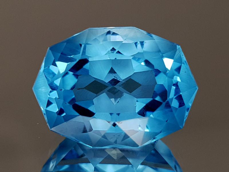 13.69CT NATURAL BLUE TOPAZ PRECISION CUT IGCTPP45