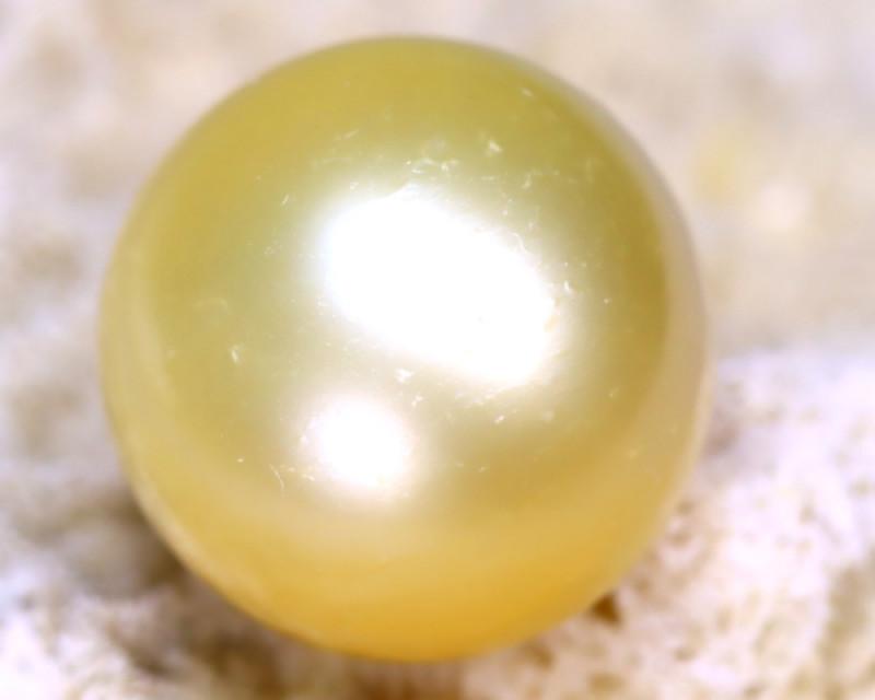12.90MM 15.40Ct Australian South Sea Salt Water Pearl E1814/A24