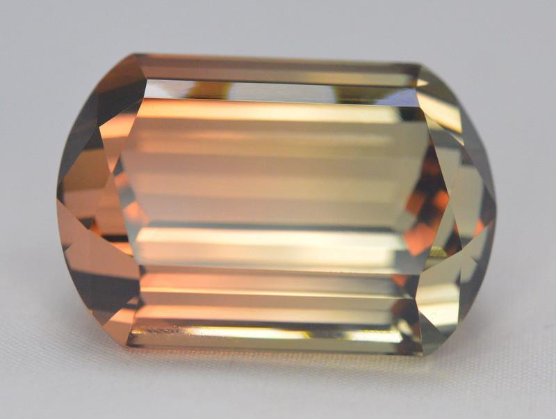 48.55 Carat Natural Bi-Color  Tourmaline