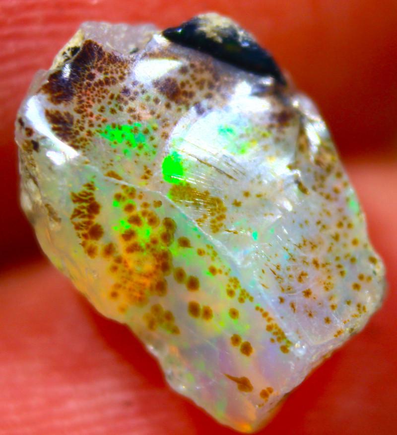 Cts.2.15 ROUGH  Ethiopian Opal   RFA20