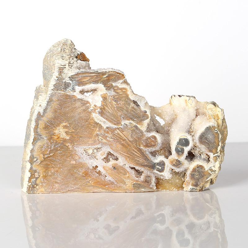 Indonesian Fossil Coral Gemstone Specimen, Gorgeous indonesian fossil coral