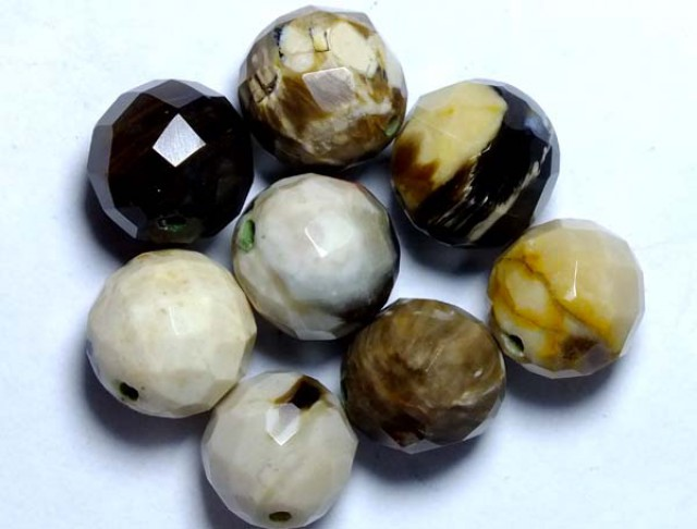 PETRIFIED WOOD BEADS, (8PC) 61.80CTS NP-1031