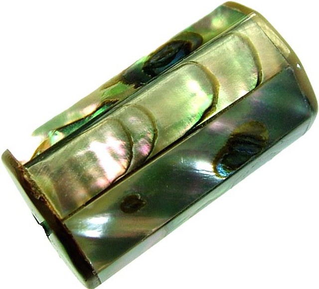 ABALONE BEAD DRILLED FROM AUSTRALIA 32.55 CTS-22 [PF325]