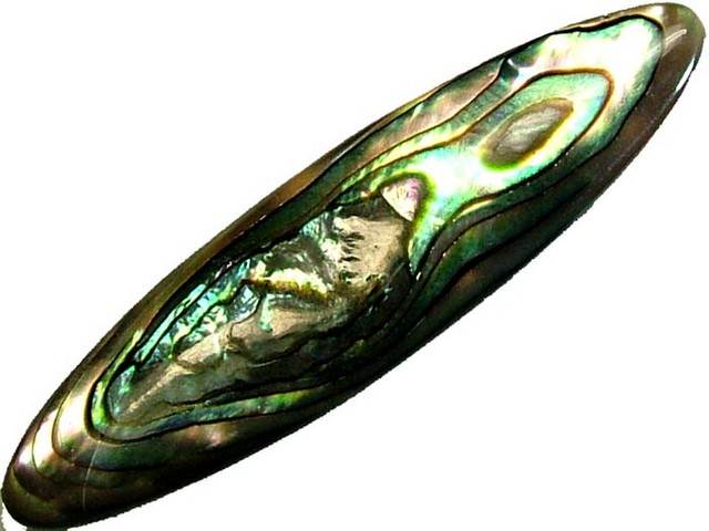 ABALONE PUFF  DOUBLE SIDED 18.75 CTS [PF340]
