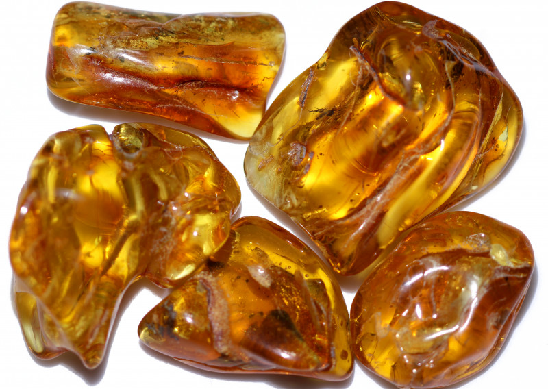 335.60 Cts 5 pcs Natural  Polished Amber from Poland  code CCC2754