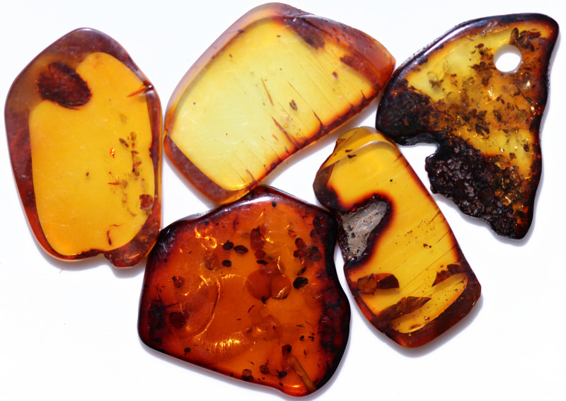 72.50 Cts 5 pcs Natural  Sliced Polished Amber from Poland  code CCC2769