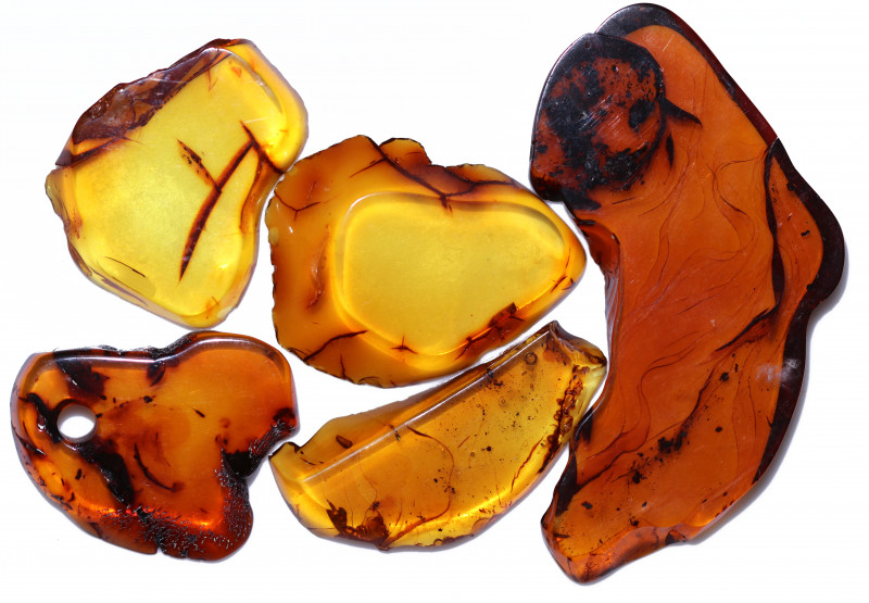89.85 Cts 5 pcs Natural  Sliced Polished Amber from Poland  code CCC2774