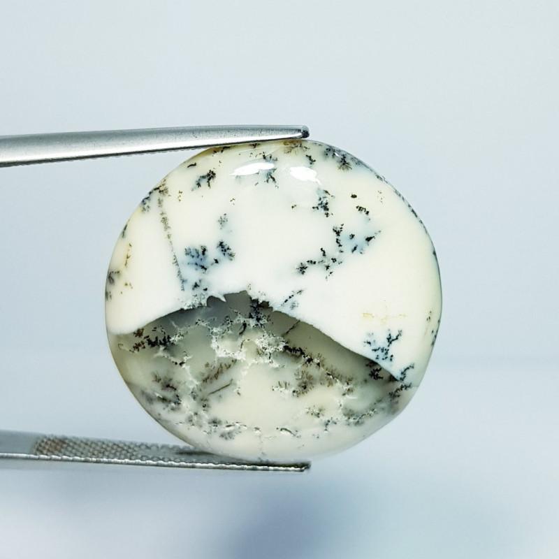 24.50 ct Natural Dendrite Opal Round Cabochon  Gemstone