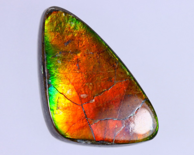 19x11mm,  8.46cts Natural Canadian Ammolite Stone / MA1530