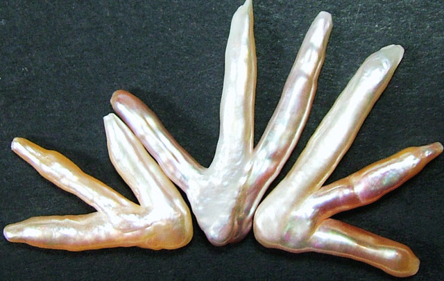 'CHICKEN FEET' KESHI PEARLS  -HIGH LUSTER  40CTS [PF396]