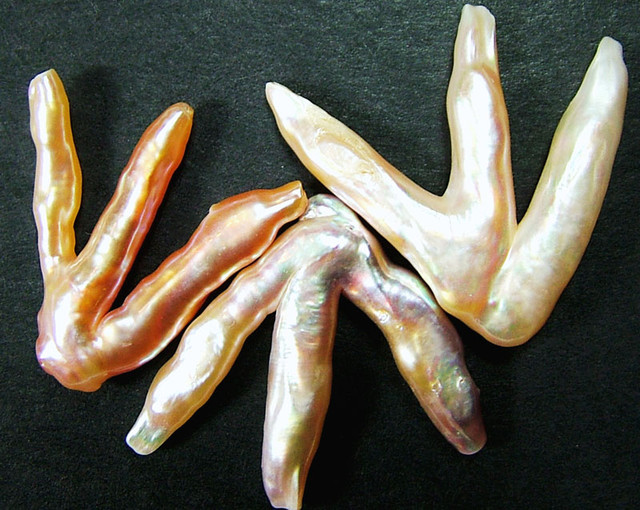 'CHICKEN FEET' KESHI PEARLS  -HIGH LUSTER  37CTS [PF421]