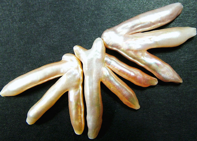 'CHICKEN FEET' KESHI PEARLS  -HIGH LUSTER  37CTS [PF422]