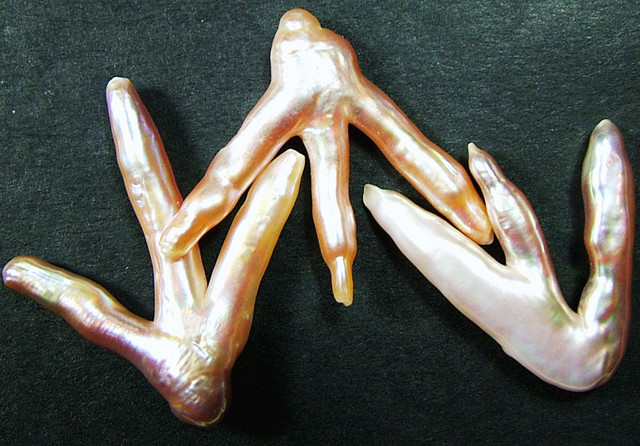 'CHICKEN FEET' KESHI PEARLS  -HIGH LUSTER  37CTS [PF424]