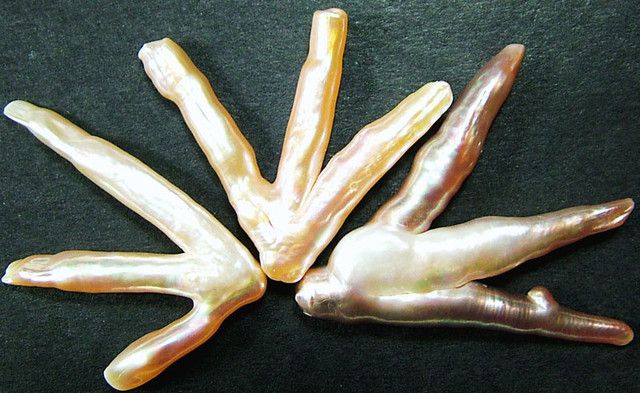 'CHICKEN FEET' KESHI PEARLS  -HIGH LUSTER  45 CTS [PF427]