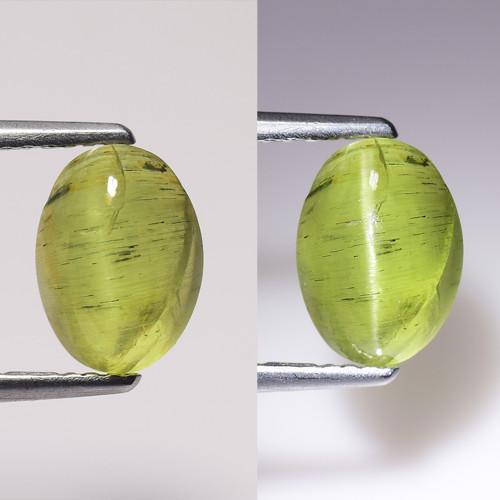 2.56Ct Natural Apatite Cat's Eye Beautiful Gemstone. CE 11