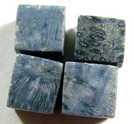 BLUE CORAL (PARCEL) 49 CTS TBG 262