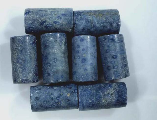 BLUE CORAL (PARCEL) 55 CTS TBG-1921