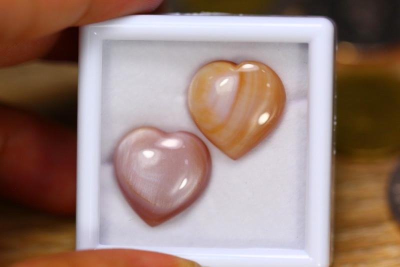 20.76ct Natural Abalone Shell Cabochon Lot V7642
