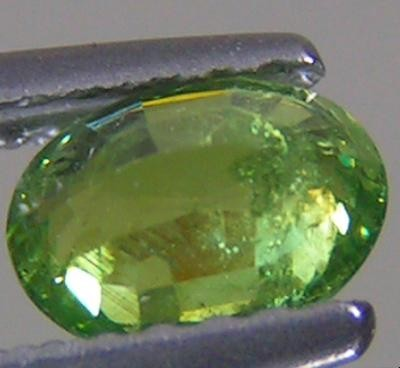 DEMANTOID GARNET .70 CARAT WEIGHT GREEN HORSE TAIL INCLUSION