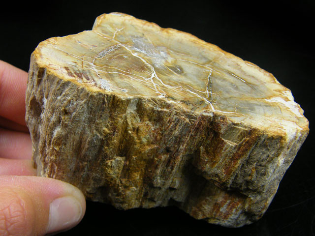 AGATE FROM NEPAL  1007 CARATS  AAT 1123