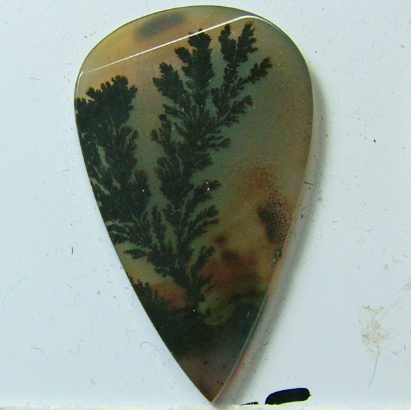 AGATE DENDRICTIC NICE PATTERNS 11.20 CTS  SG- 480