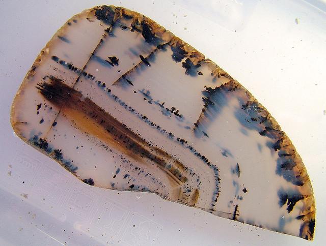 Natural Dendritic Agate Cut Stone 196.90 carats   AS 5310