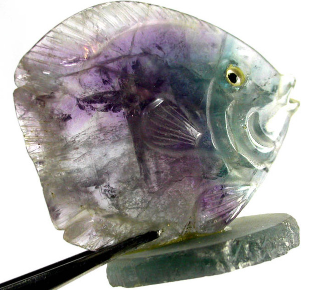 COLOURFUL FLUORITE FISH CARVING  93.20 CTS[MX 7179 ]