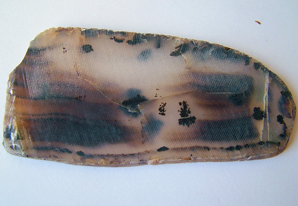 Natural Dendritic Agate Cut Stone  196.05 carats   AS 5366