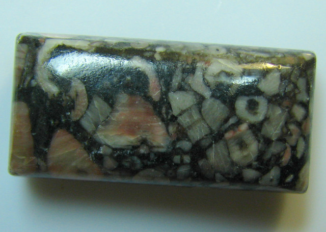 CRINOID FOSSIL CABOCHON CUT STONE 37.75 CTS