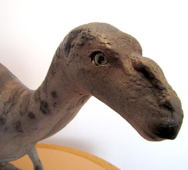 Australian Muttaburrasaurs Dinosaur Iguanodont