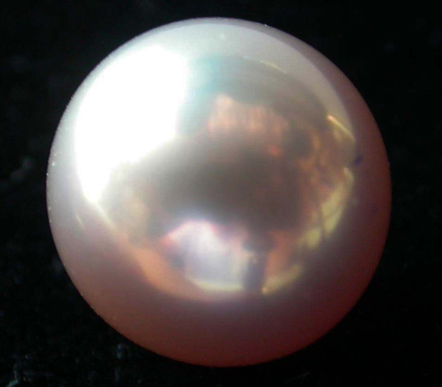 PEARL AAA GRADE -ROUND HIGH LUSTER 10 +MM 9.30  CTS [PF2138]
