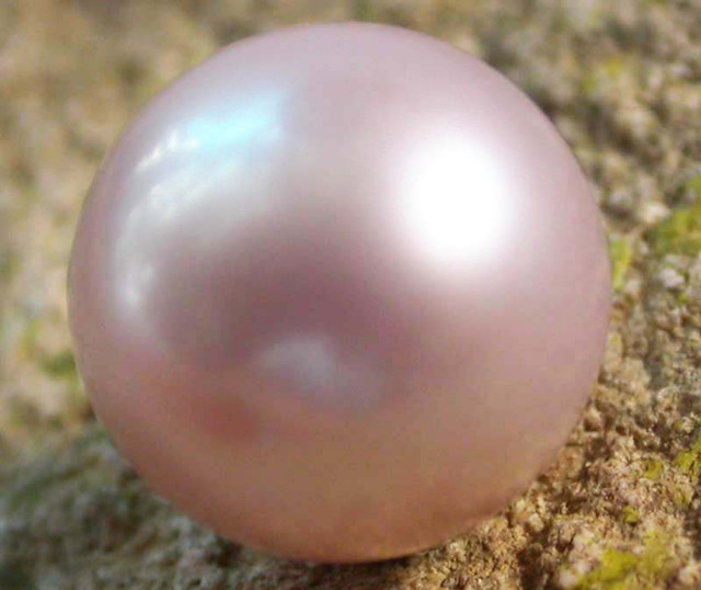 PEARL AAA GRADE -ROUND HIGH LUSTER 10 +MM  9.80 CTS [PF2141]
