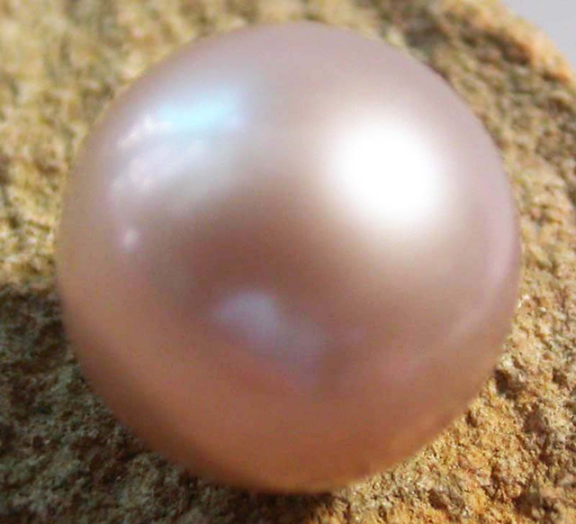 PEARL AAA GRADE -ROUND HIGH LUSTER 10 +MM  9.15 CTS [PF2144]