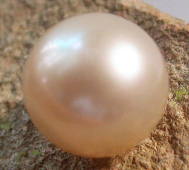 PEARL AAA GRADE -ROUND HIGH LUSTER 10 +MM  9.20 CTS [PF2146]