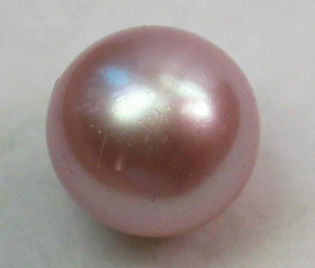 AAA GRADE ROUND PEARL  HIGH LUSTER- 10-11  MM [PF2238]