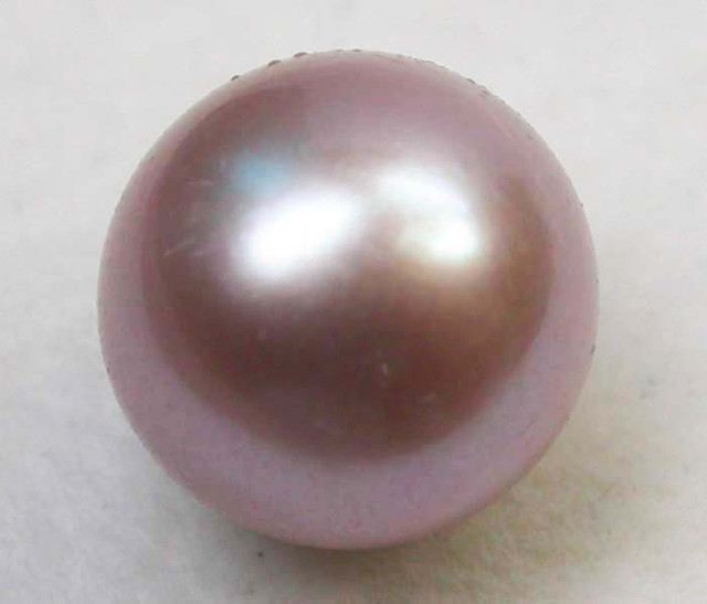 AAA GRADE ROUND PEARL  HIGH LUSTER- 10-11  MM [PF2240]