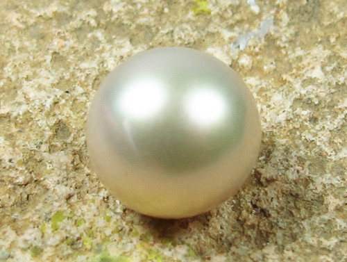 AAA GRADE ROUND PEARL  HIGH LUSTER- 9-10  MM [PF2296]