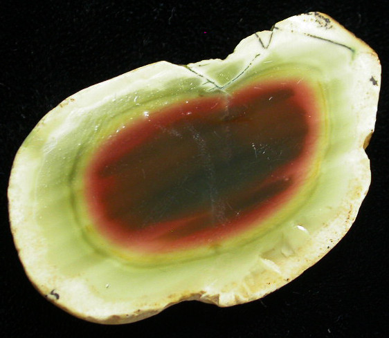 60.15 CTS IMPERIAL JASPER  SLICE FROM MEXICO [F3427]