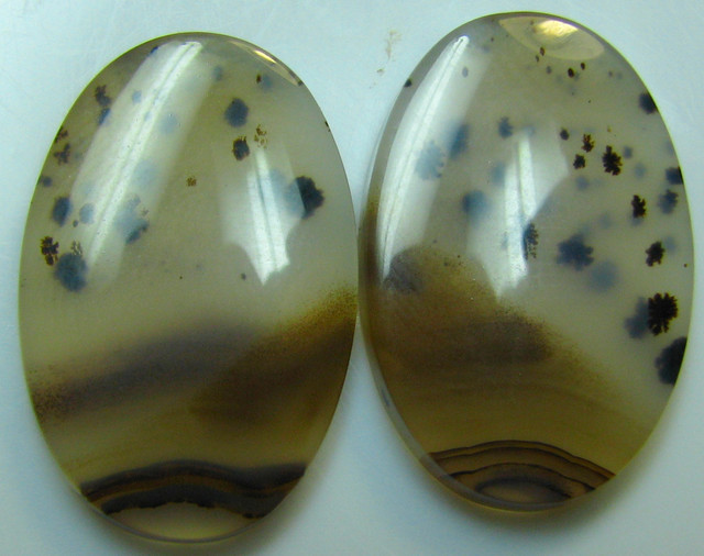 MONTANA AGATE FROM USA GREAT MATCHING PAIR 23.75 CTS