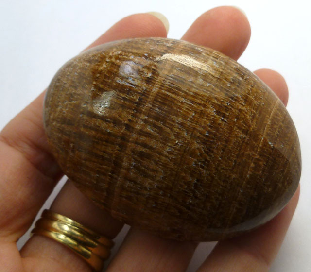 452 CTS MOROCCAN AGATE PALM STONE MS 194