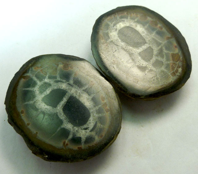 333 CTS PAIR SPLIT POLISHED SERPATIAN NODULES MS 219