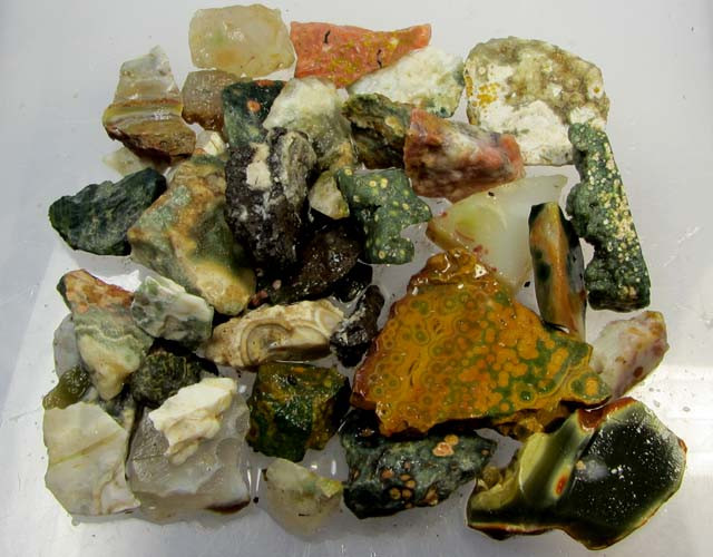 234 GRS OCEAN JASPER ROUGH MS 1031