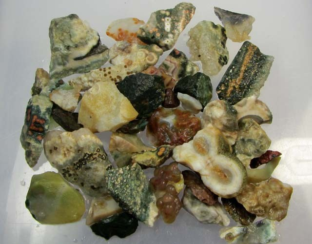 229 GRS OCEAN JASPER ROUGH MS 1037