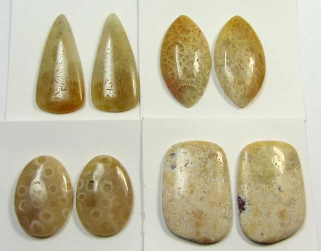 88 CTS PAIRS NATURAL  CORAL FOSSIL STONES MS1044
