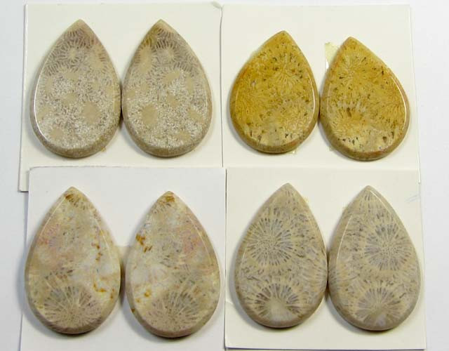 111 CTS PAIRS NATURAL  CORAL FOSSIL STONES MS1046